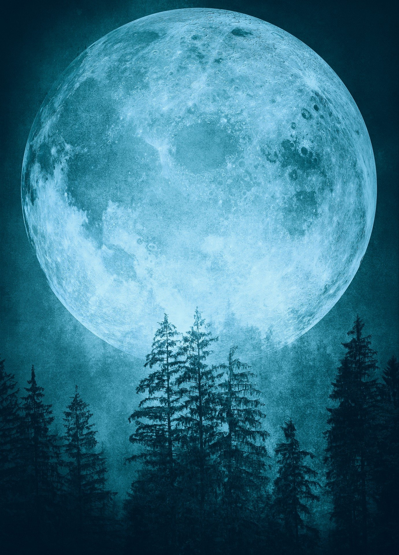 large moon over pine trees
